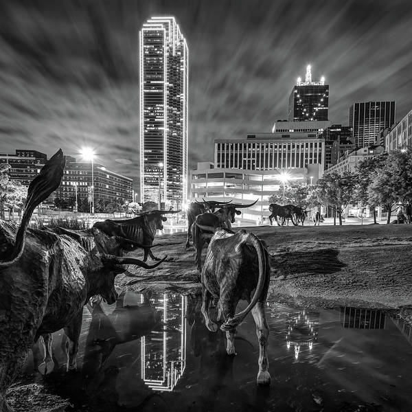 Photograph - Dallas Skyline And Texas Longhorn Cattle Drive Sculptures - Black And White by Gregory Ballos