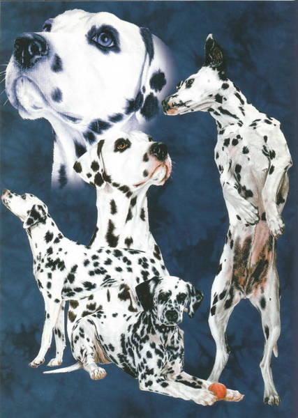 Drawing - Dalmatian Alteration by Barbara Keith