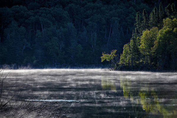 Photograph - Dam Lake by Doug Gibbons