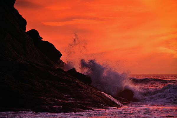 Photograph - Dana Point Sunset by Kyle Hanson