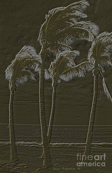 Wall Art - Photograph - Dancing Caribbean Palm Trees Embossed Bronze by John Stephens