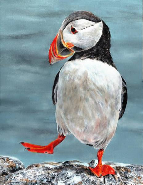 Painting - Dancing Puffin by John Neeve