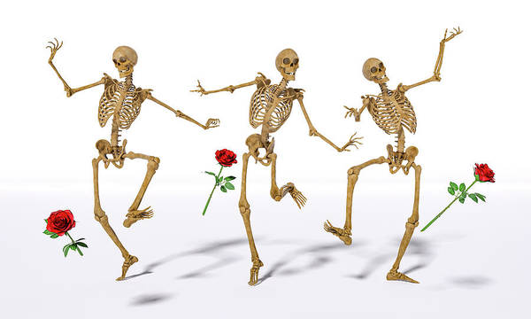 Wall Art - Digital Art - Dancing Skeleton Trio by Betsy Knapp