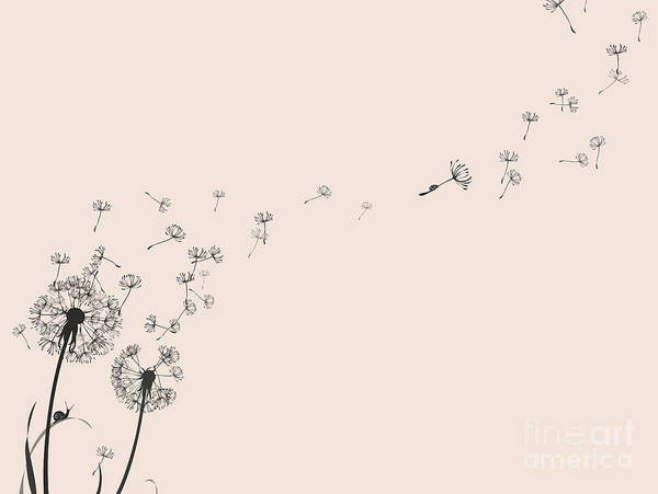 Seed Head Wall Art - Digital Art - Dandelion Silhouette Snail And Ladybug by Eva mask