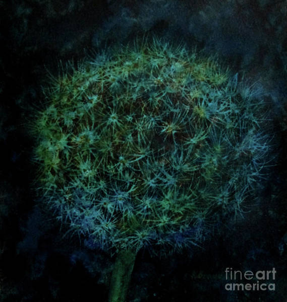 Wall Art - Painting - Dandylion Dark by Kathy Braud