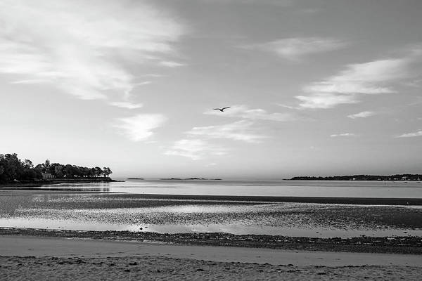 Photograph - Dane Street Beach In Beverly Ma Morning Light Red Clouds Black And White by Toby McGuire