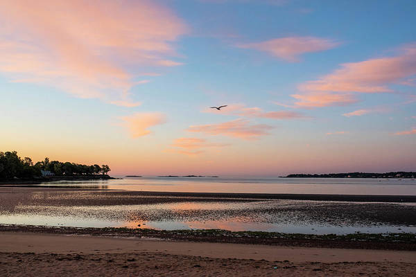 Photograph - Dane Street Beach In Beverly Ma Morning Light Red Clouds by Toby McGuire
