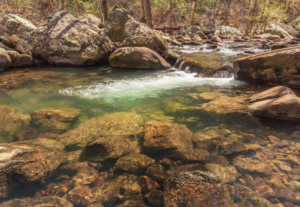 Photograph - Daniel Creek At Cloudland Canyon State Park by Keith Smith