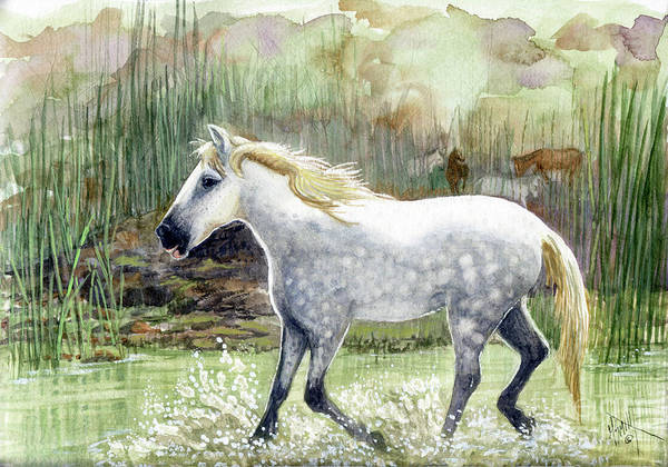 Painting - Dapple Grey Wild Horse by Marilyn Smith