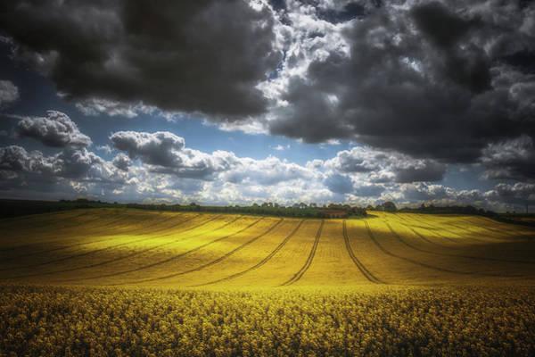 Wall Art - Photograph - Dappled Sunlight On The Rapeseed Field by Chris Fletcher