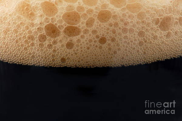 Wall Art - Photograph - Dark Beer Isolated On White Background by Gunnar Pippel