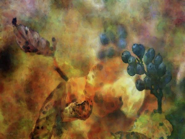 Photograph - Dark Berries 6121 Idp_2 by Steven Ward