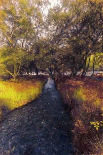 Photograph - Dark Irish Stream In The Fall Painting by Debra and Dave Vanderlaan