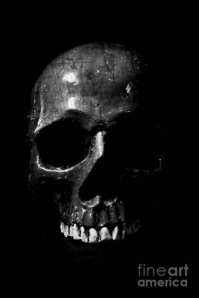 Photograph - Dark Skull Low Key by Edward Fielding