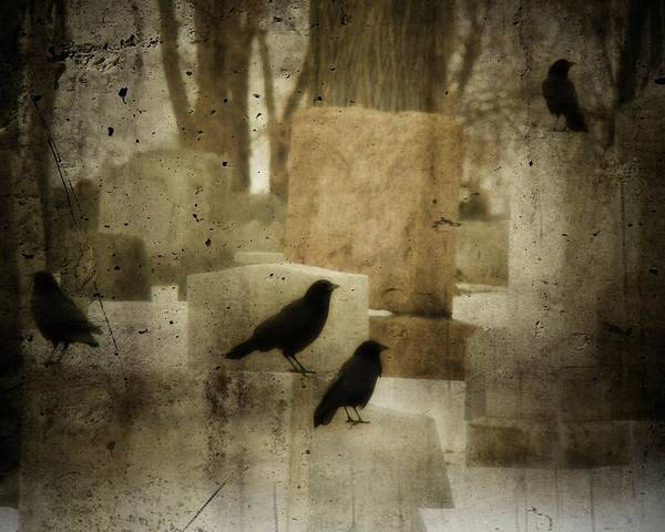 Wall Art - Photograph - Dark Winter by Gothicrow Images