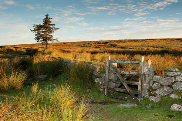 Photograph - Dartmoor Gate At Sunrise IIi by Helen Northcott