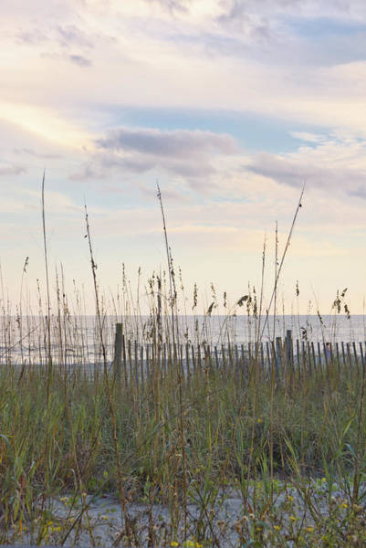 Photograph - Dawn At The Beach 2 by Andrea Anderegg