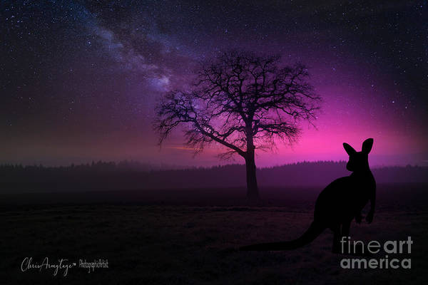 Digital Art - Dawn by Chris Armytage