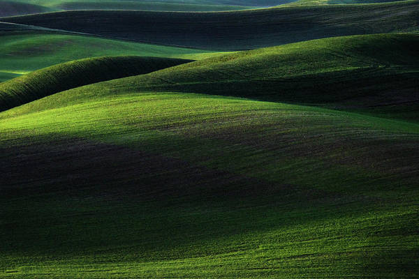 Photograph - Dawn In The Palouse by Kristen Wilkinson