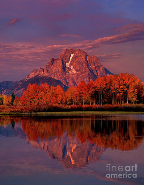 Photograph - Dawn Light Mount Moran Oxbow Bend Grand Tetons Np  by Dave Welling