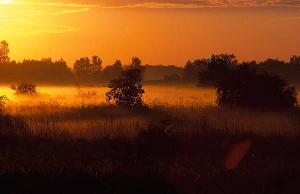 Photograph - Dawn by Michael Lustbader