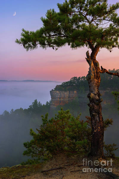 Wall Art - Photograph - Dawn Over The Gorge by Anthony Heflin