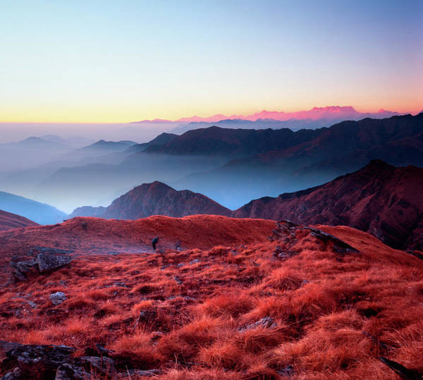 Wall Art - Photograph - Dawn Rises On A Himalayan Alpine Meadow by House Light Gallery - Steven House Photography