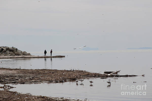 Photograph - Day At The Salton Sea by Colleen Cornelius
