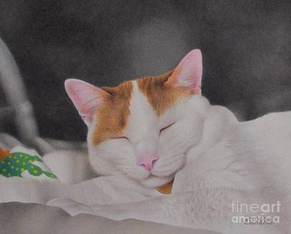 Drawing - Daydreamer by Pamela Clements