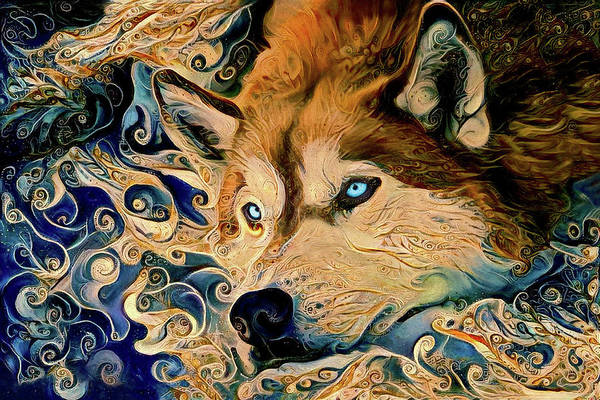 Digital Art - Daydreaming Siberian Husky Dog by Peggy Collins