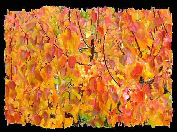 Wall Art - Digital Art - Days Of Autumn 23 by Will Borden