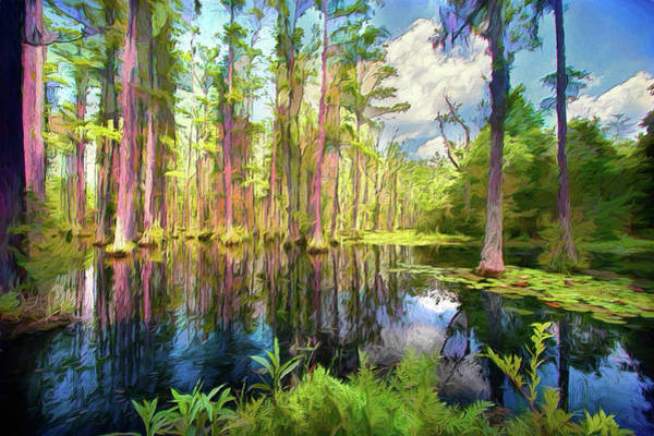 Wall Art - Painting - Dazzling Cypress Reflections Ap by Dan Carmichael