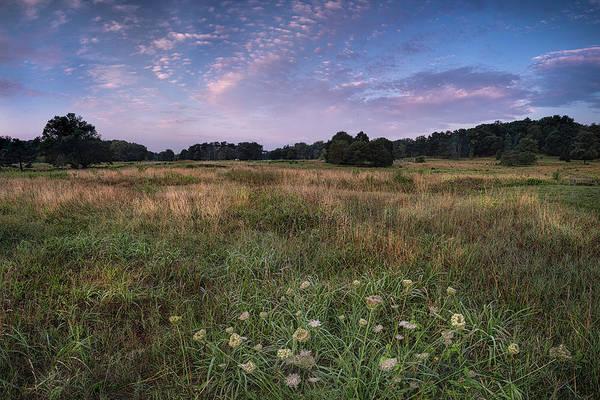 Wall Art - Photograph - Dc National Arboretum by Robert Fawcett