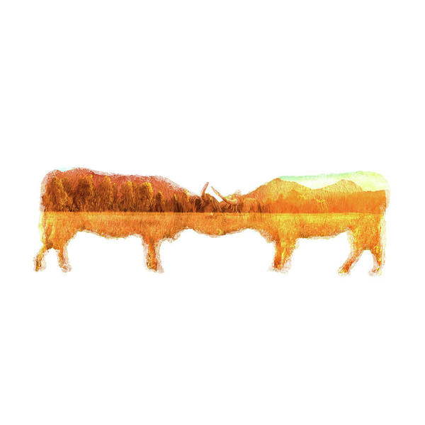 Photograph - De Artwork - Highland Cows by Rob D Imagery