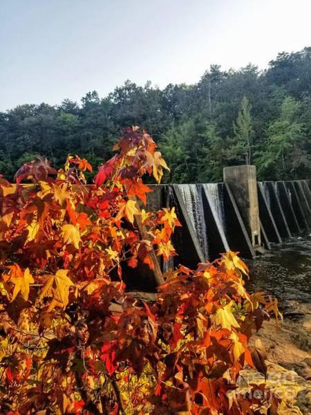 Photograph - De Soto Falls In Autumn by Rachel Hannah