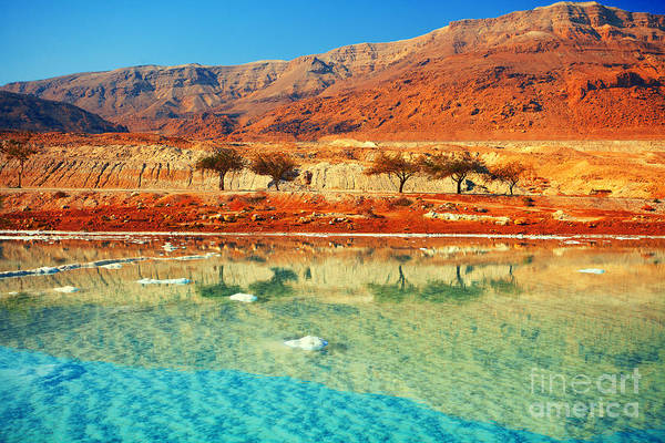 Wall Art - Photograph - Dead Sea by Vvvita
