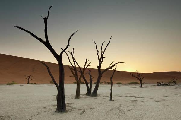 Wall Art - Photograph - Dead Vlei, Sossusvlei, Namibia by Ben Cranke