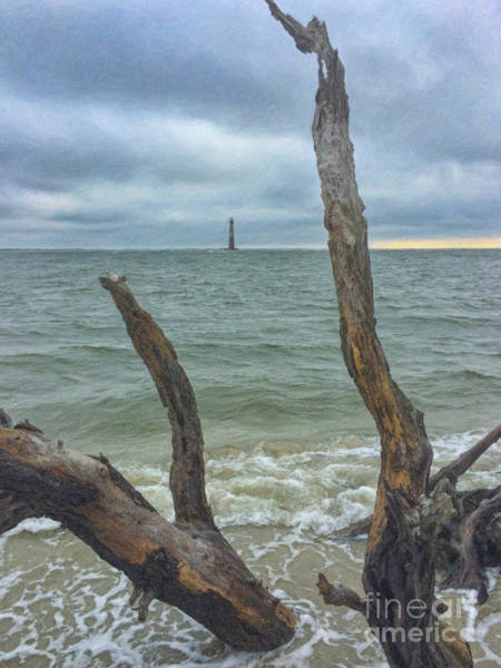 Painting - Dead Wood Lighthouse View - Morris Island Lighthouse by Dale Powell