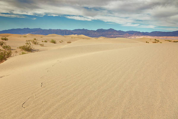 Wall Art - Photograph - Death Valley National Park X by Ricky Barnard