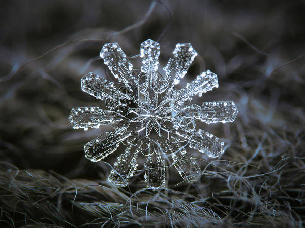 Photograph - December 18 2015 - Snowflake 3 by Alexey Kljatov