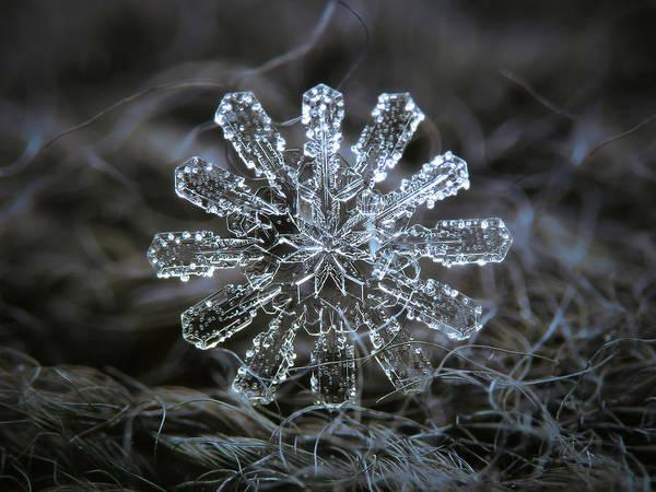 December 18 2015 - Snowflake 3 Art Print