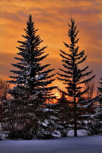 Photograph - December Sunset by David Matthews