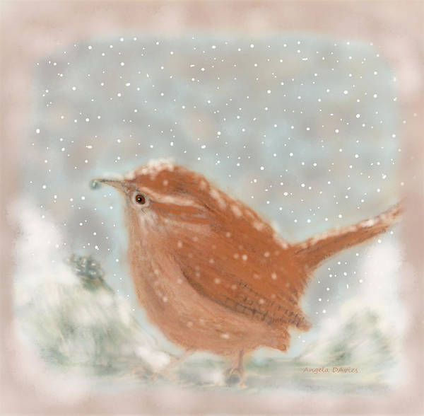 Drawing - December Wren by Angela Davies