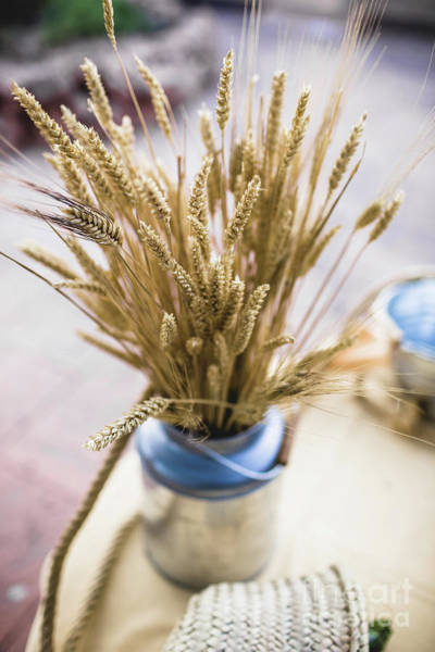Photograph - Decoration Objects For Events And Weddings In Rural And Retro Style. by Joaquin Corbalan