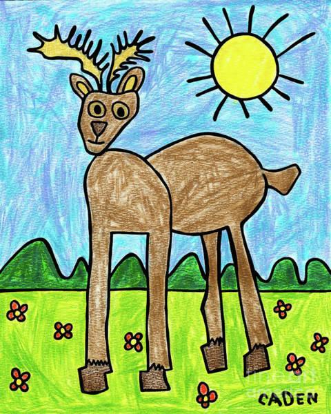 Drawing - Caden's Deer by Amy E Fraser and Caden Fraser Perkins