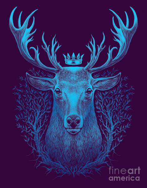 Reindeer Wall Art - Digital Art - Deer Head. Graphic Illustration Of A by Barandash Karandashich