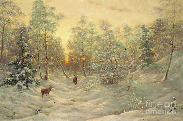 Painting - Deer In A Snowy Landscape At Dusk by Ivan Fedorovich Choultse