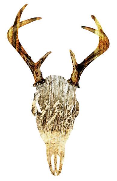 Deer Skull Digital Art - Deer Skull by Laura Grisamore