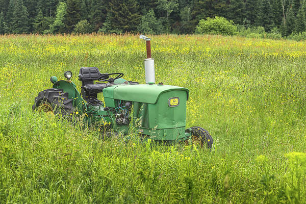 Photograph - Deere Country by Rod Best
