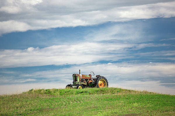 Wall Art - Photograph - Deere On The Hill by Todd Klassy